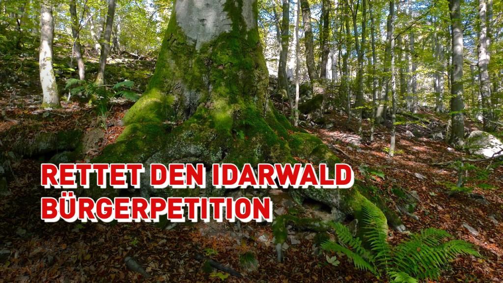 Keine Windkraft im Idarwald